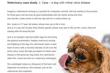 Veterinary case study
