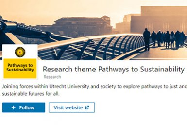LinkedIn page Pathways to Sustainability