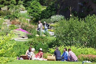 Visitors Enjoying The Rock Garden