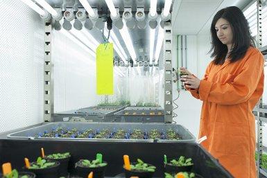 Onderzoek naar planten