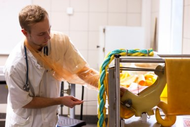 Alternatieve dierproeven worden ingezet waar mogelijk