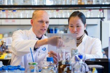 Onderzoekers die samenwerken