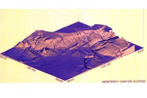 The Monterey Canyon system