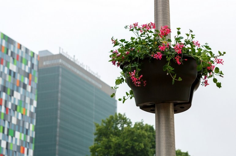 Bloembakken op Utrecht Science Park De Uithof