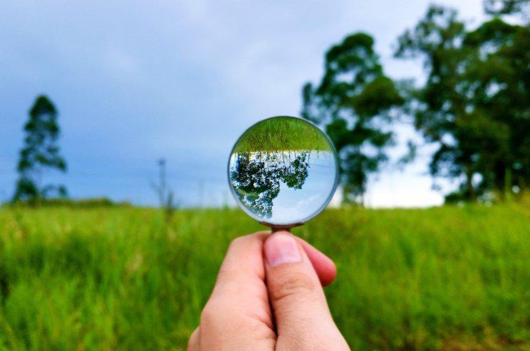 vergrootglas op groen park
