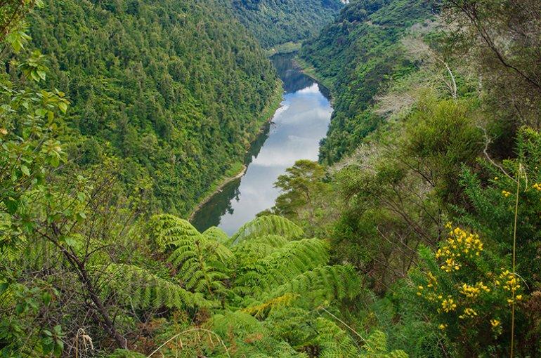 Whanganui River © iStockphoto.com