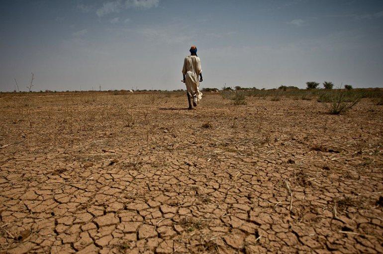 Droogte Sahel
