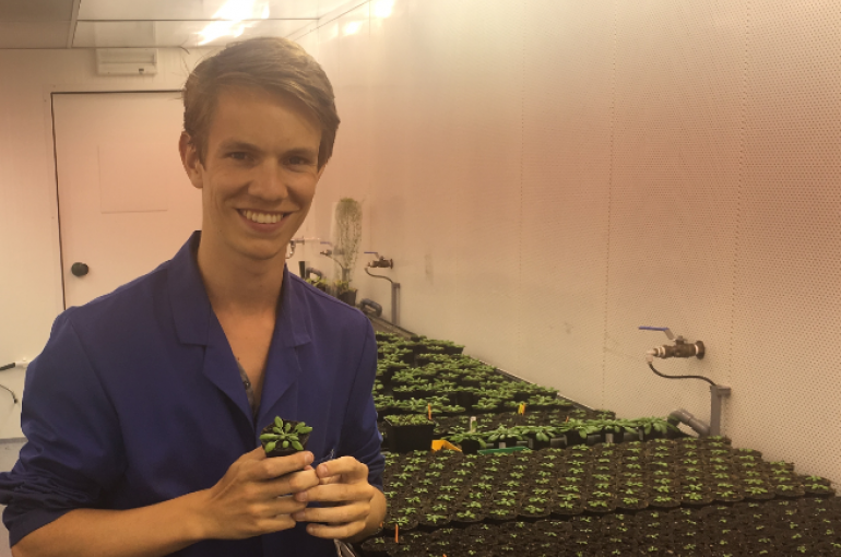 Jesse Küpers plant ecophysiology