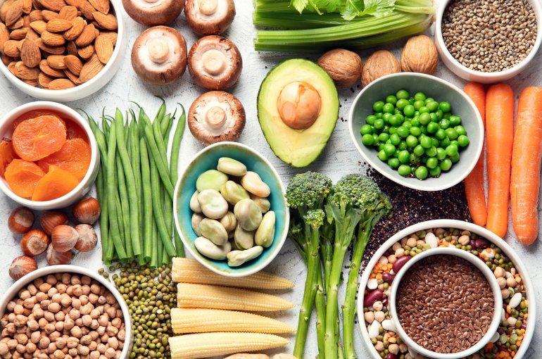 Future Food Utrecht becomes a member of the Green Protein Alliance - News -  Universiteit Utrecht