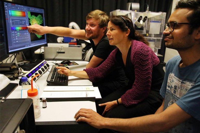 Anna Akhmanova en onderzoekers (foto: Rafael-Philippen - NWO)